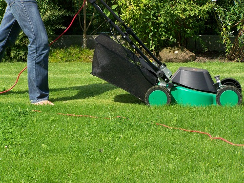 When Is The Best Time to Install Arizona Sod on a Lawn
