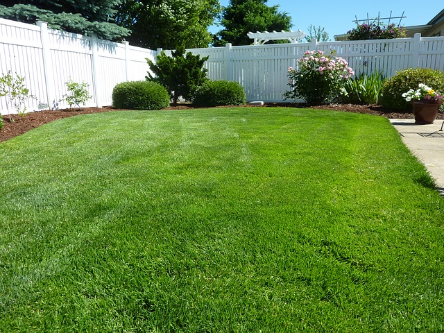 Having a great looking lawn is hard work.