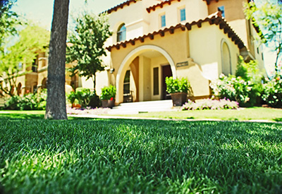 a house with front lawn sod from Evergreen Turf
