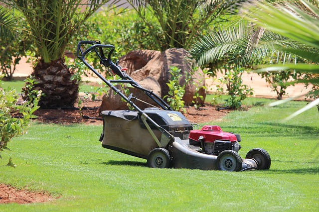 Spring Lawn Care Tip #5: Lawn Mower Tune-up